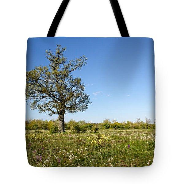 Solitude Tree In Blossom Grassland Tote Bag