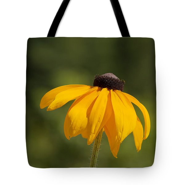 Solo Black-eyed Susan Tote Bag