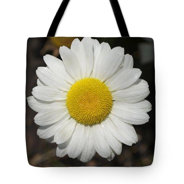 Solo Daisy Tote Bag