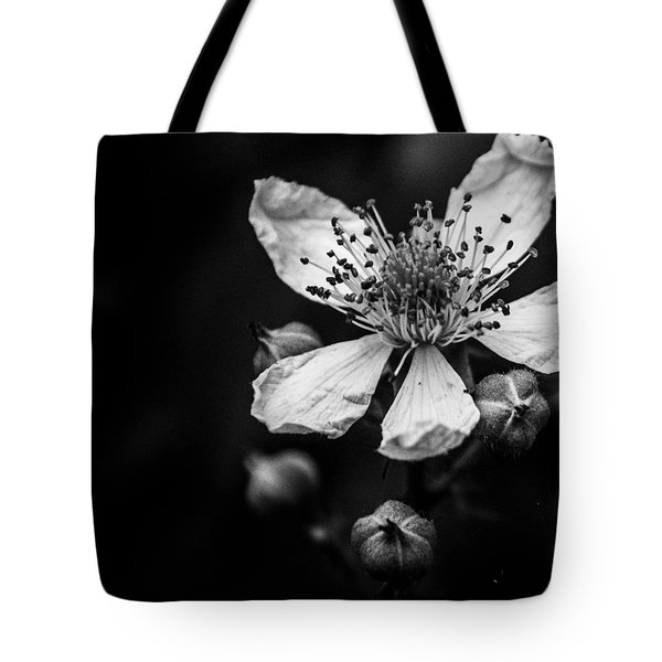 Solo In Ballet Tote Bag
