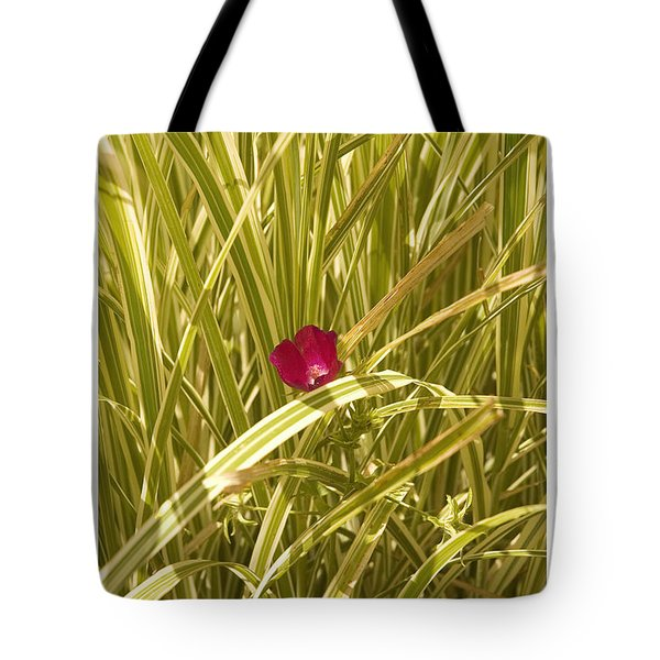Tote Bag featuring the photograph Solo by R Thomas Berner