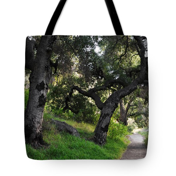 Solstice Canyon Live Oak Trail Tote Bag by Kyle Hanson