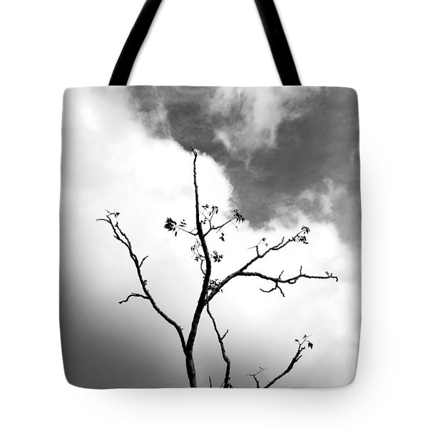 Solstice Dance #3 Tote Bag by Kathleen Grace
