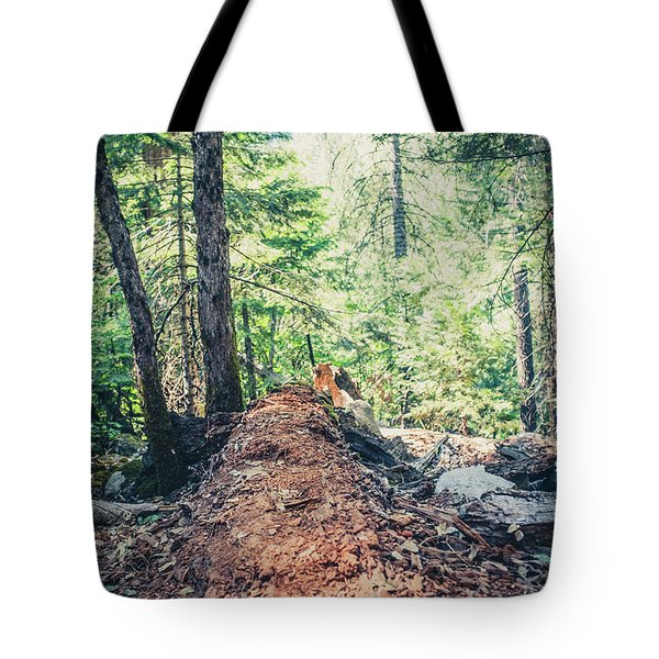 Tote Bag featuring the photograph Somber Walk- by JD Mims