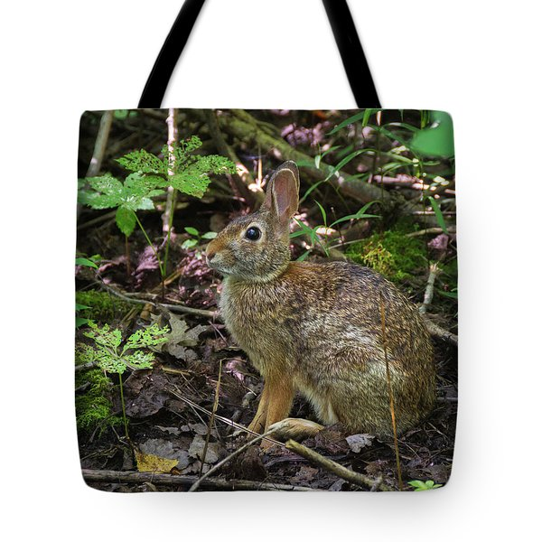 Tote Bag featuring the photograph Some Bunny Stopped By by Bill Pevlor