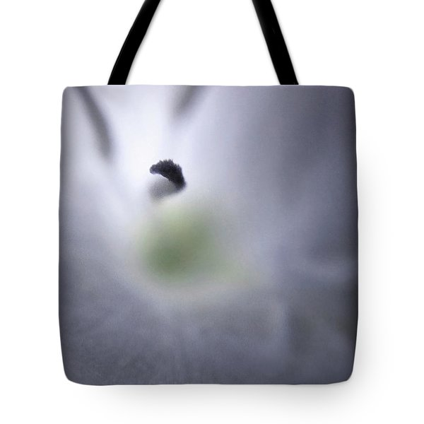 Some Landscapes Are Bigger Than Others Tote Bag