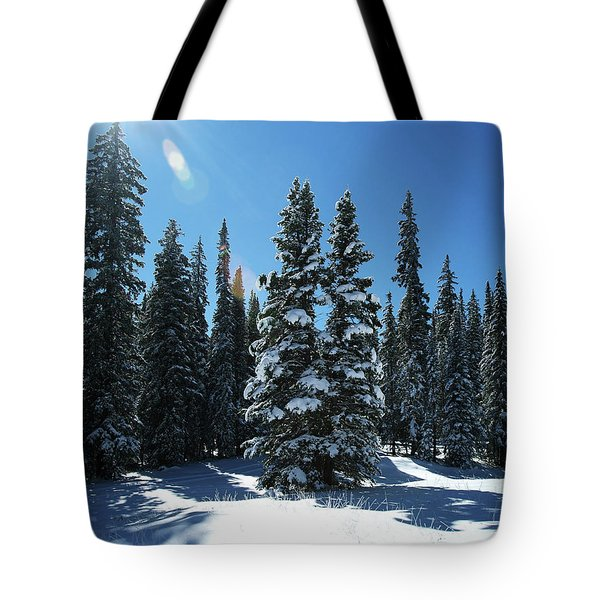Some Where In Colorado Tote Bag