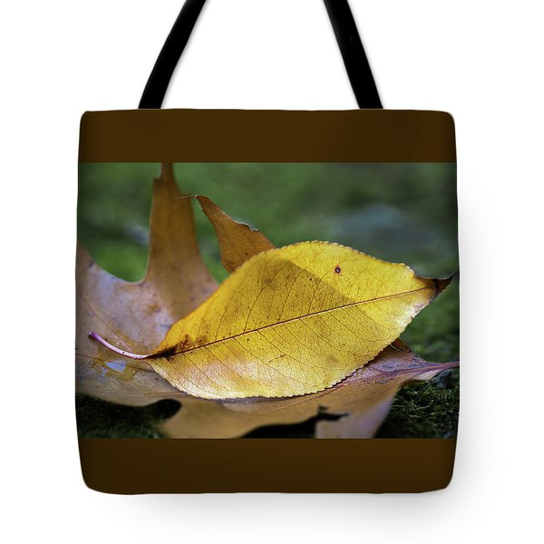 Tote Bag featuring the photograph Something Fishy by Dale Kincaid