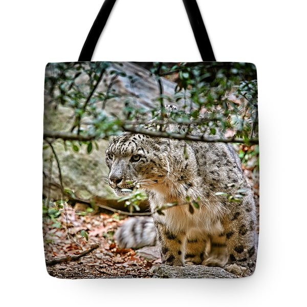 Something Got His Attention Tote Bag by Karol Livote
