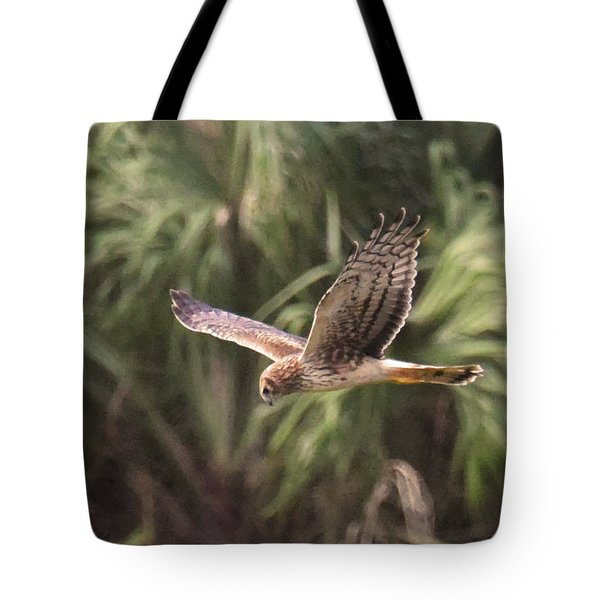 Tote Bag featuring the photograph Something Is Down There by Sally Sperry