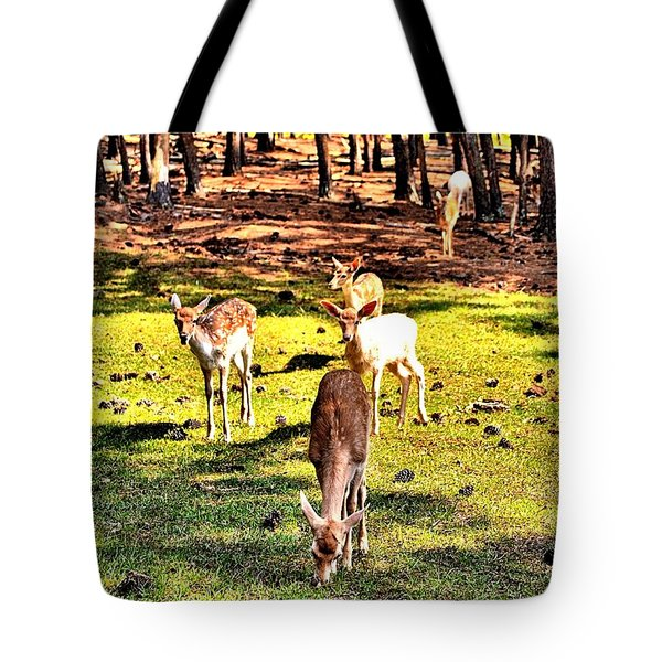 Something This Way Cometh Tote Bag