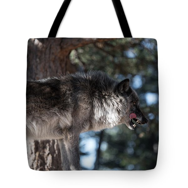 Sometimes You Have To Kill Tote Bag
