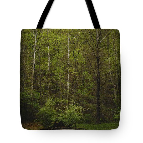 Tote Bag featuring the photograph Somewhere In The Woods by Shane Holsclaw