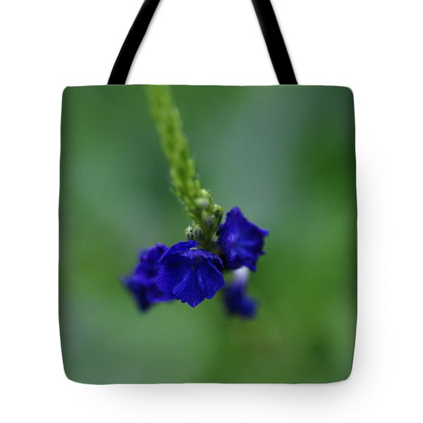 Somewhere In This Dream Tote Bag