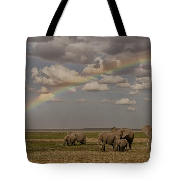 Somewhere Under The Rainbow Tote Bag by Gary Hall