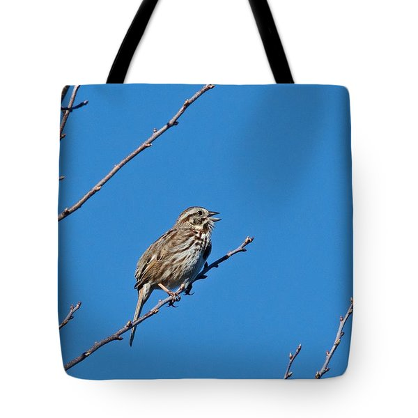 Tote Bag featuring the photograph Song Sparrow by Michael Peychich