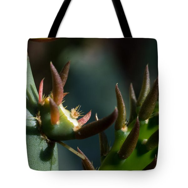Tote Bag featuring the photograph Sonora Macro IIi by Carolina Liechtenstein