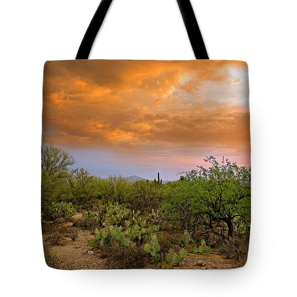 Tote Bag featuring the photograph Sonoran Desert H11 by Mark Myhaver