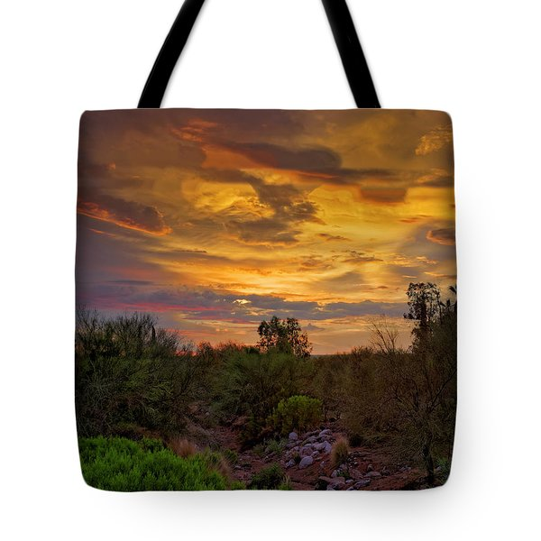 Tote Bag featuring the photograph Sonoran Sonata H01 by Mark Myhaver