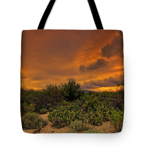 Tote Bag featuring the photograph Sonoran Sunset H4 by Mark Myhaver