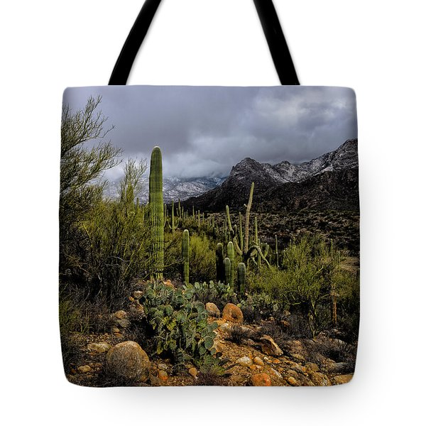 Tote Bag featuring the photograph Sonoran Winter No.1 by Mark Myhaver