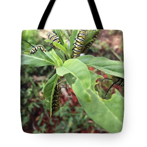 Soon To Change Tote Bag by Audrey Robillard