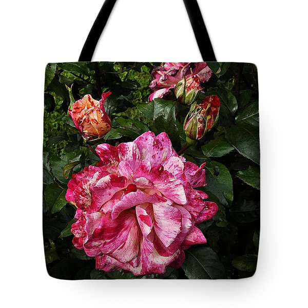 Tote Bag featuring the photograph Sorbet by Karo Evans