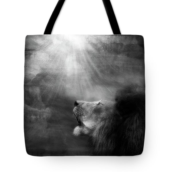 Tote Bag featuring the photograph Sorrow's Call by Yvonne Emerson