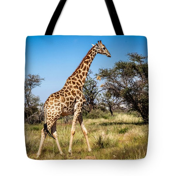 Tote Bag featuring the photograph Sossulvei Giraffe by Gregory Daley  PPSA