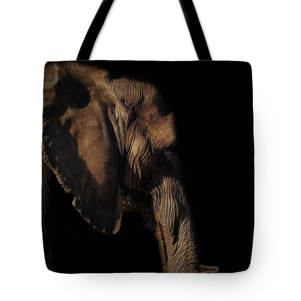 Soul Of The Planet Tote Bag
