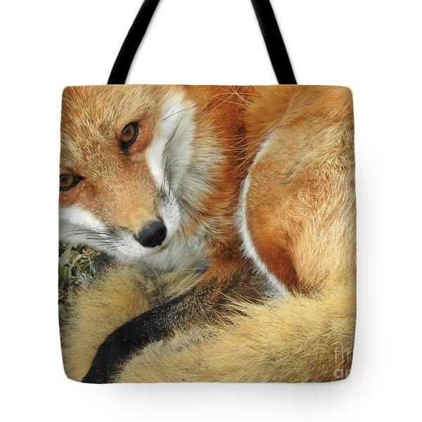 Soulful Eyes Tote Bag