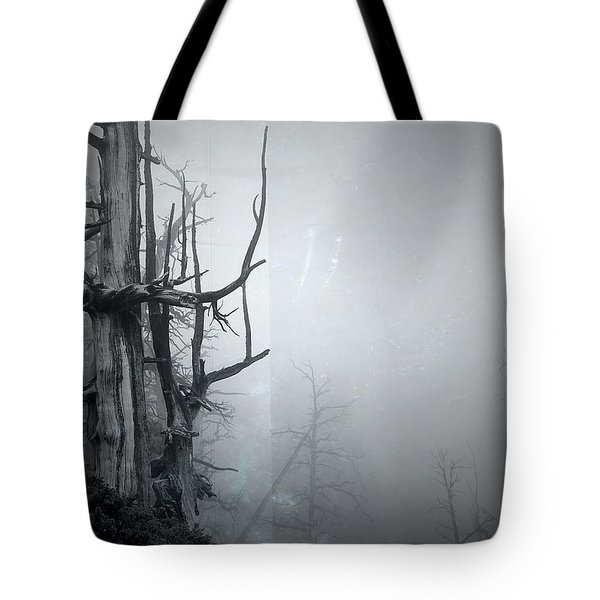 Souls Tote Bag by Mark Ross