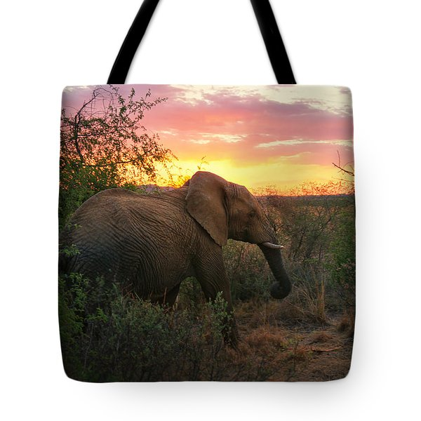 South African Elephant At Sunset - Black Rhino Reserve Tote Bag by Menega Sabidussi