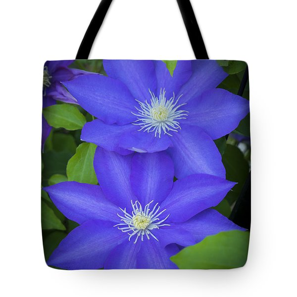 South Carolina Color Tote Bag
