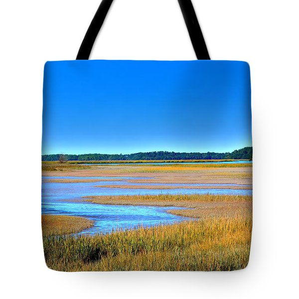 Tote Bag featuring the photograph South Carolina Lowcountry H D R by Lisa Wooten