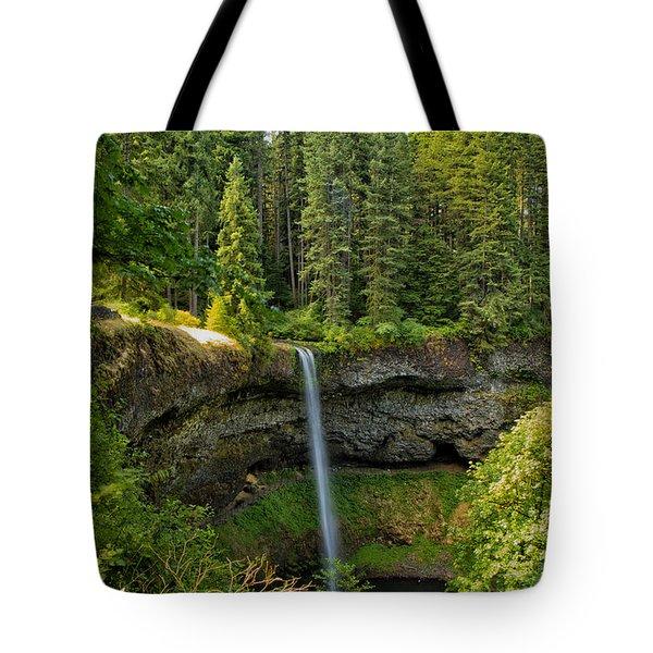 South Falls 0417 Tote Bag