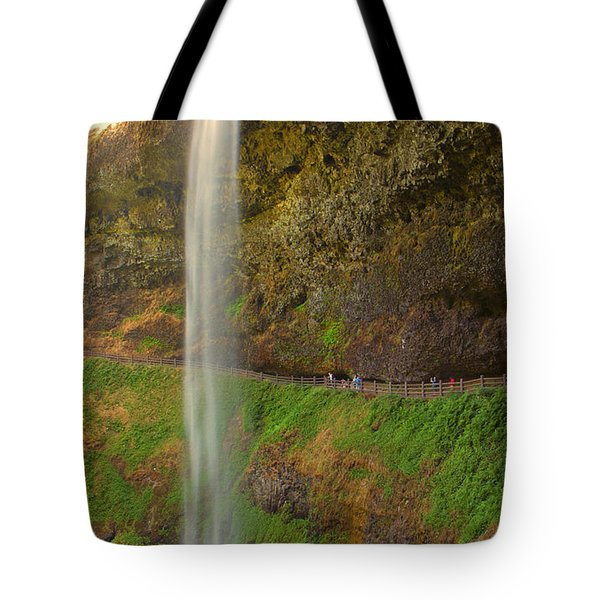 South Falls 0448 Tote Bag by Tom Kelly