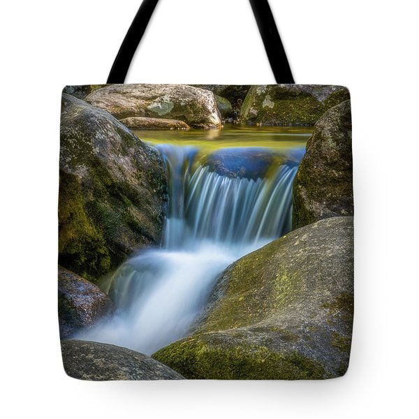 Tote Bag featuring the photograph South Mtn State Park-1 by Joye Ardyn Durham
