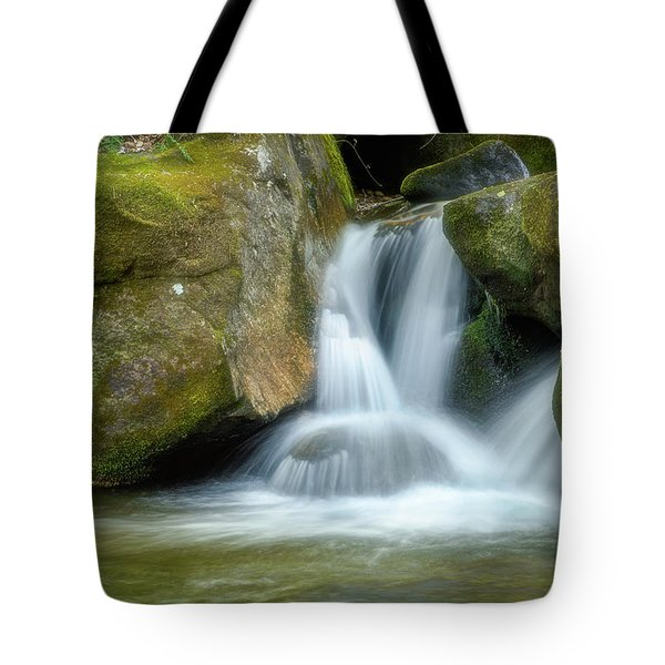 Tote Bag featuring the photograph South Mtn State Park 2 by Joye Ardyn Durham