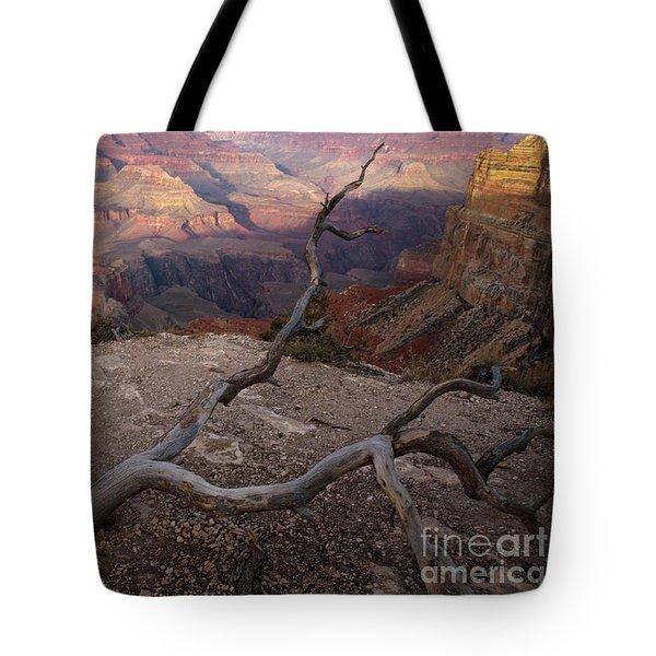 South Rim Golden Hour Tote Bag
