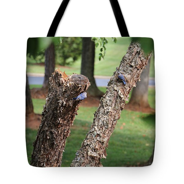 Southern Blue Birds Tote Bag
