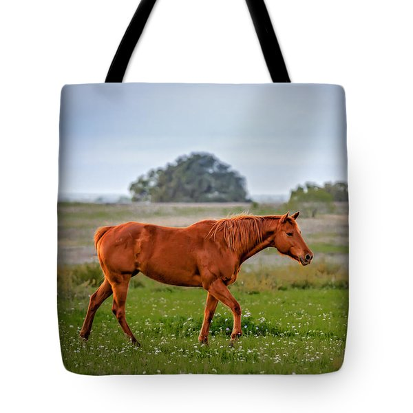 Tote Bag featuring the photograph Southern Field by Melinda Ledsome