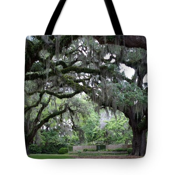 Southern Mist Tote Bag by David and Lynn Keller