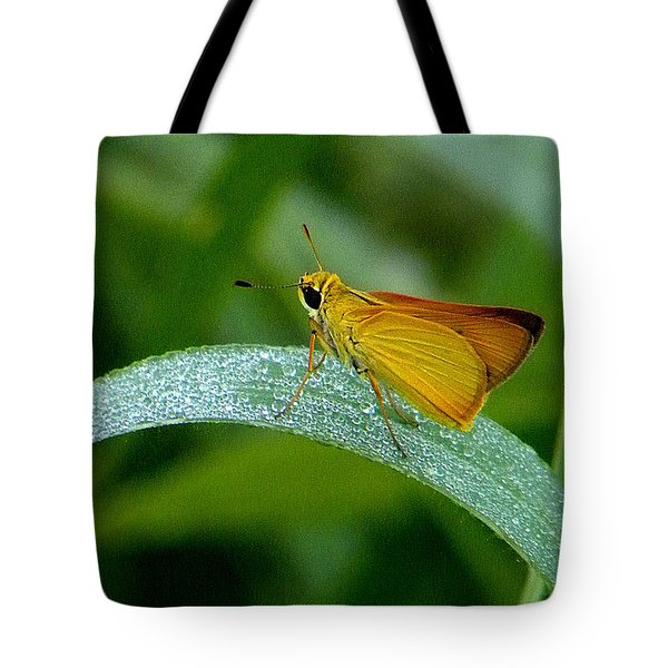 Southern Skipperling Butterfly  000 Tote Bag by Chris Mercer