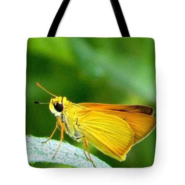 Southern Skipperling Butterfly 001  Tote Bag by Chris Mercer