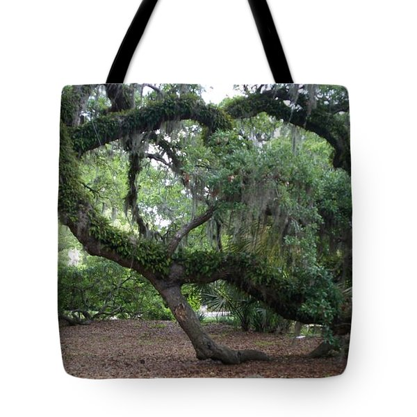 Southern Support Tote Bag by David and Lynn Keller