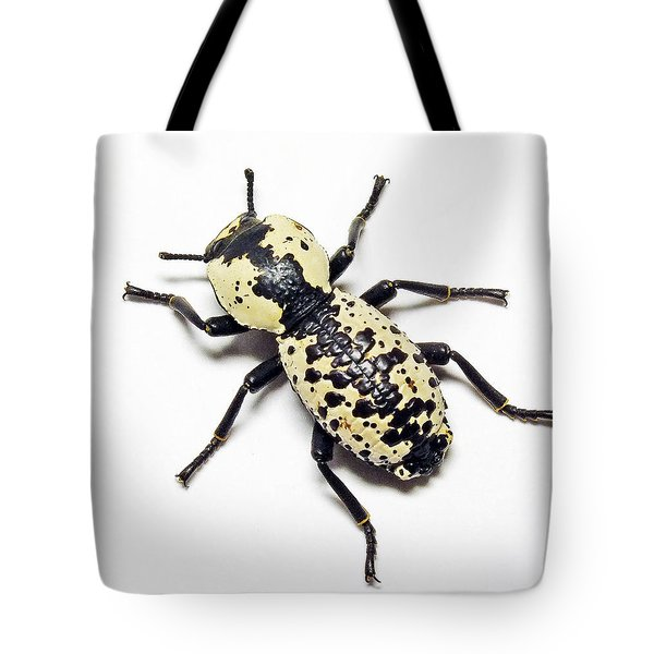 Southwestern Ironclad Beetle Tote Bag by Bill Morgenstern