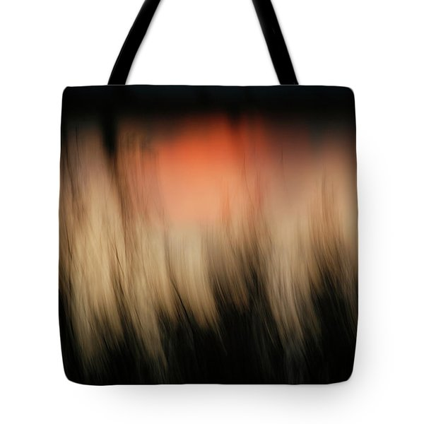 Tote Bag featuring the photograph Southwestern Sunset by Marilyn Hunt