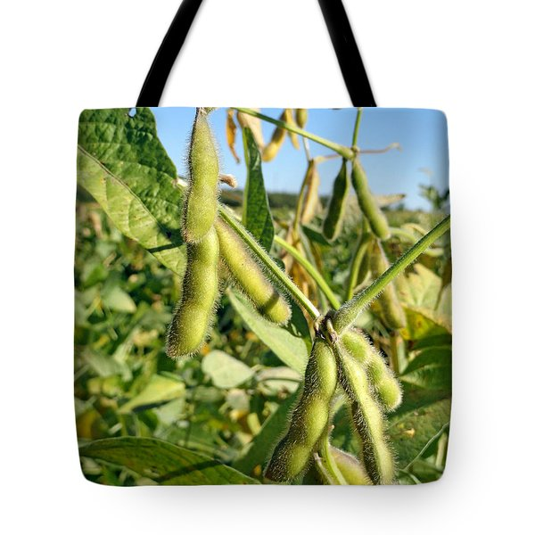 Soybeans In Autumn Tote Bag