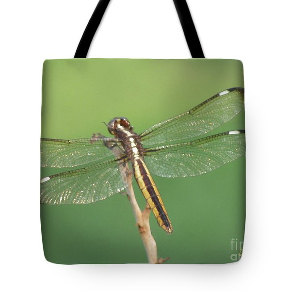Tote Bag featuring the photograph Spangled Skimmer Dragonfly Female by Donna Brown